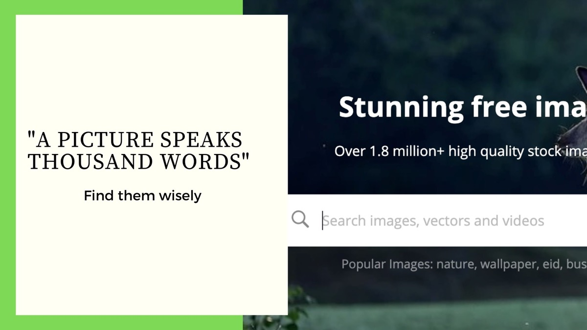10 websites for royalty Free images